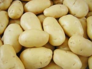Potato Exporters Pakistan